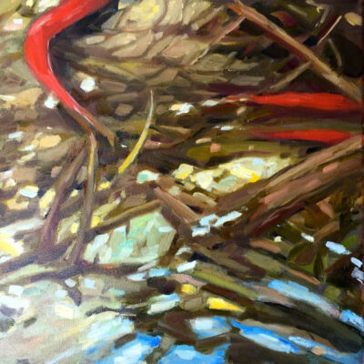"Red Salmon at Brisco Falls 12"" x 12"""