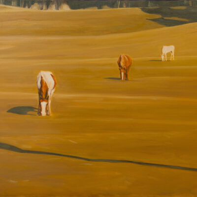 "Shadow and Horses  30"" x 40""  Oil on Canvas"